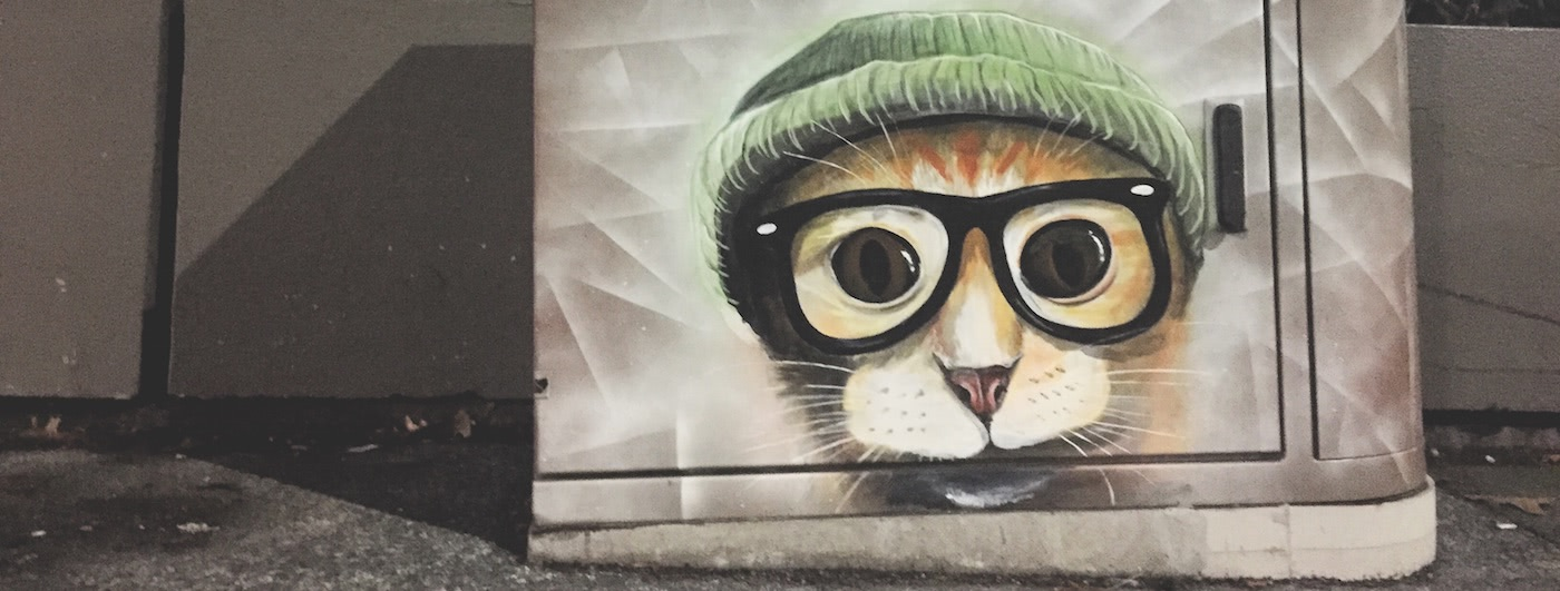A Hipster Cat